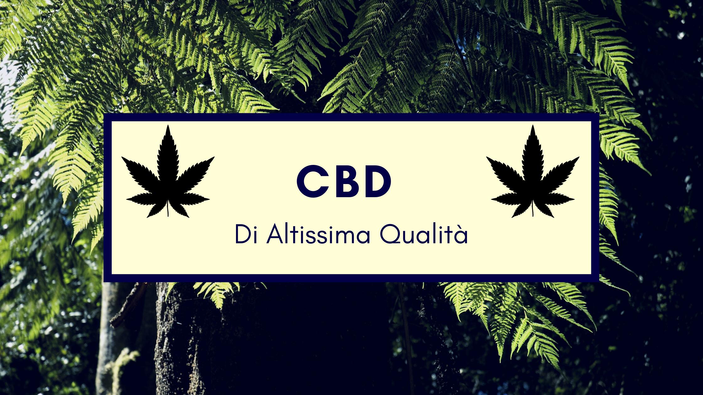 CBD benefici